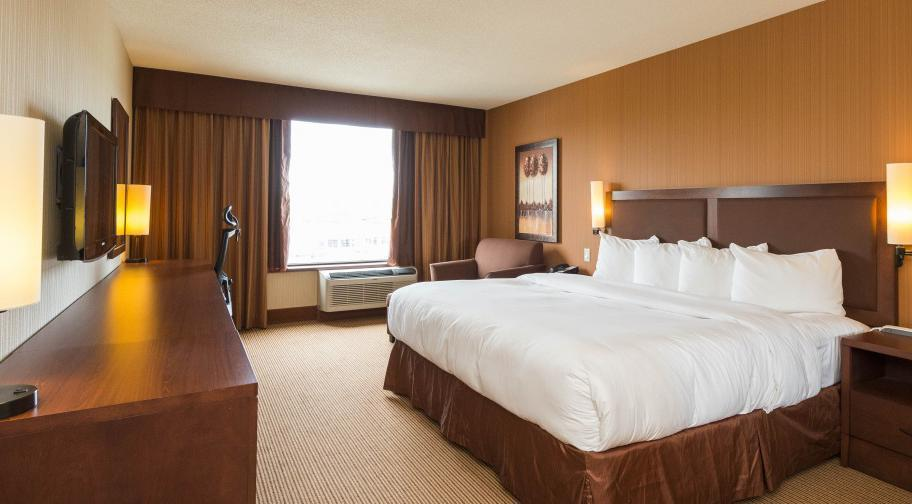 Quality Inn & Suites Lévis - Room